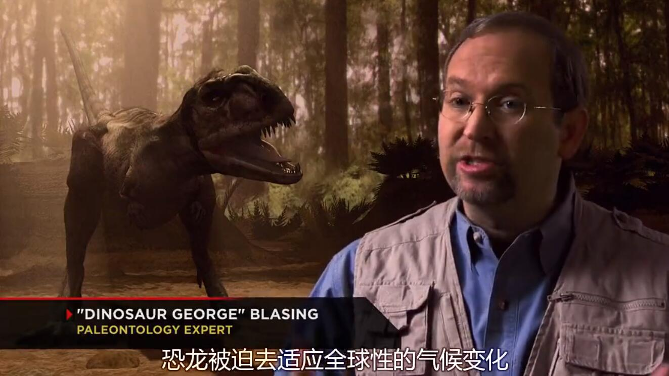 【英语中字】动物世界纪录片:恐龙探秘 Dinosaur Secrets Revealed (2002) 全12集完整版 720P图片 No.1