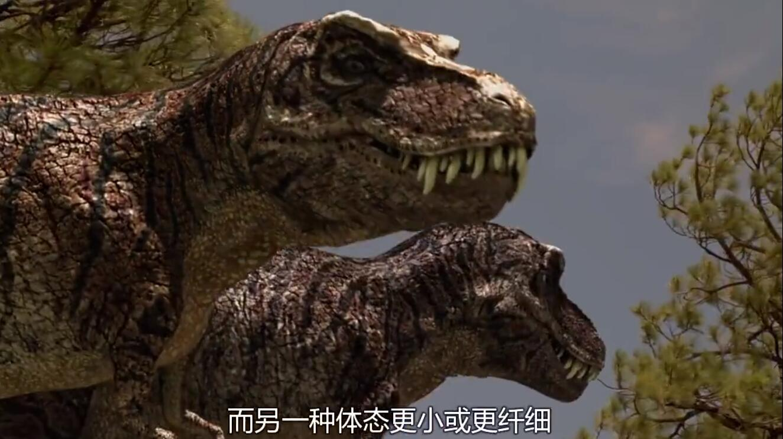 【英语中字】动物世界纪录片:恐龙探秘 Dinosaur Secrets Revealed (2002) 全12集完整版 720P图片 No.3