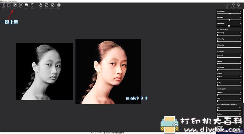 [Windows]Picture Colorizer 2.3.0 Pro单文件(AI人工智能黑白相一键上色) 配图 No.3