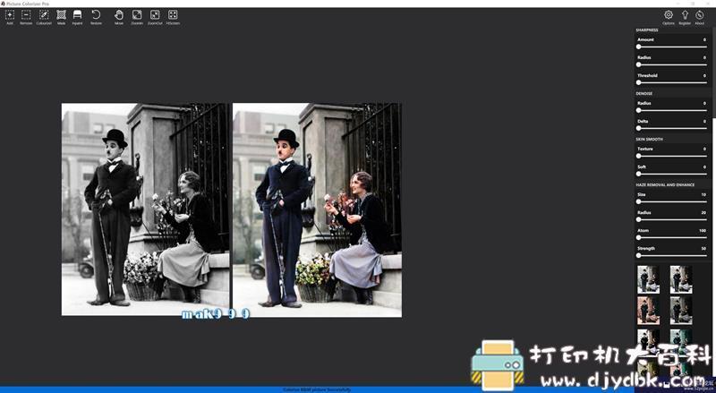 [Windows]Picture Colorizer 2.3.0 Pro单文件(AI人工智能黑白相一键上色) 配图 No.4
