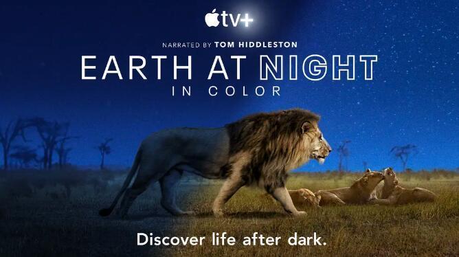 纪录片:夜色中的地球 Earth at Night in Color (2020) 全6集中英字幕 超清1080P图片 No.1