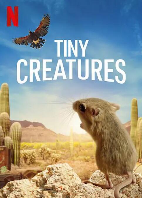 【英语中英字幕】Netflix动物纪录片:微观世界/迷你生物世界 Tiny Creatures (2020) 全8集 超清1080P图片