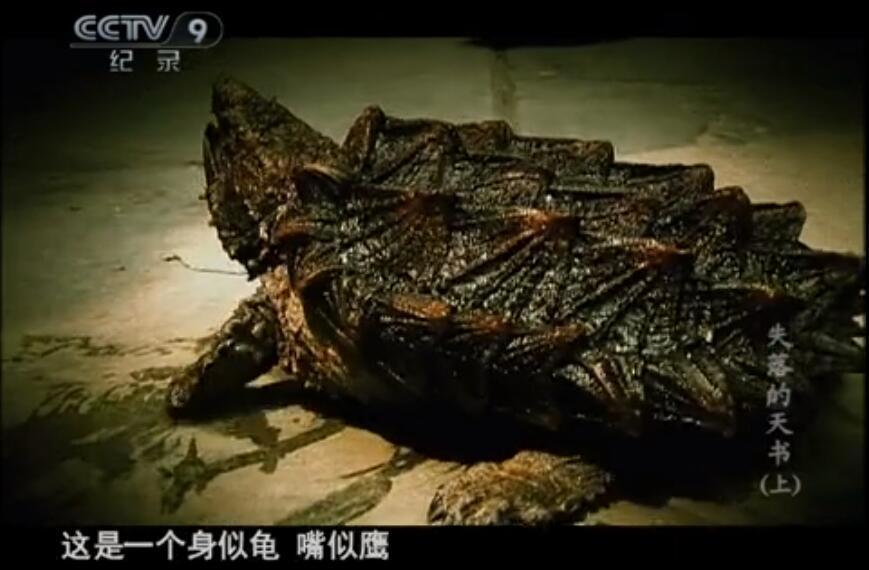 【国语中字】央视纪录片:山海经-失落的天书 (2010) 全1集图片