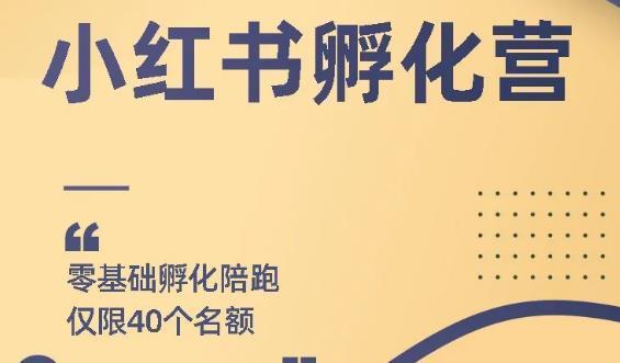 勇哥小红书撸金快速起量项目:教你如何快速起号获得曝光,做到月躺赚在3000+【视频教程】 配图
