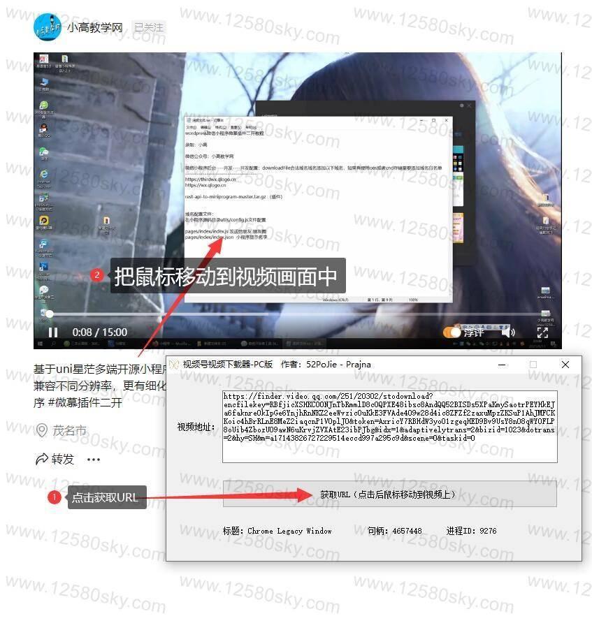 [Windows]微信视频号视频下载器 v1.1 配图 No.2