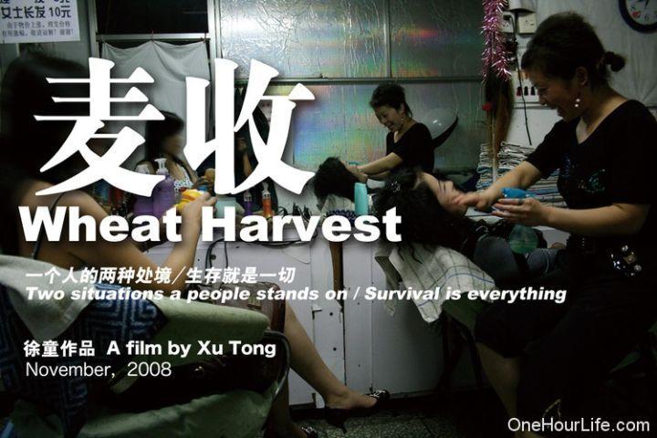 [国语中字]中国独立电影纪录片的巅峰之作《游民三部曲》-徐童图片