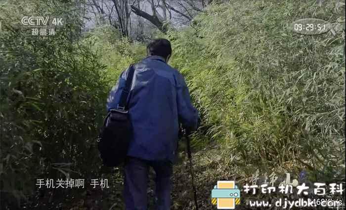 安卓骆驼Live增强版,含国内超清频道,影视轮播,MV歌曲等图片 No.2