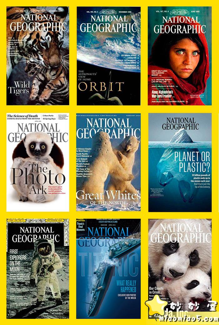 美國國家地理出品,動物世界科普視頻:小探險家,14個視頻圖片 No.1