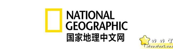 美國國家地理出品,動物世界科普視頻:小探險家,14個視頻圖片 No.2