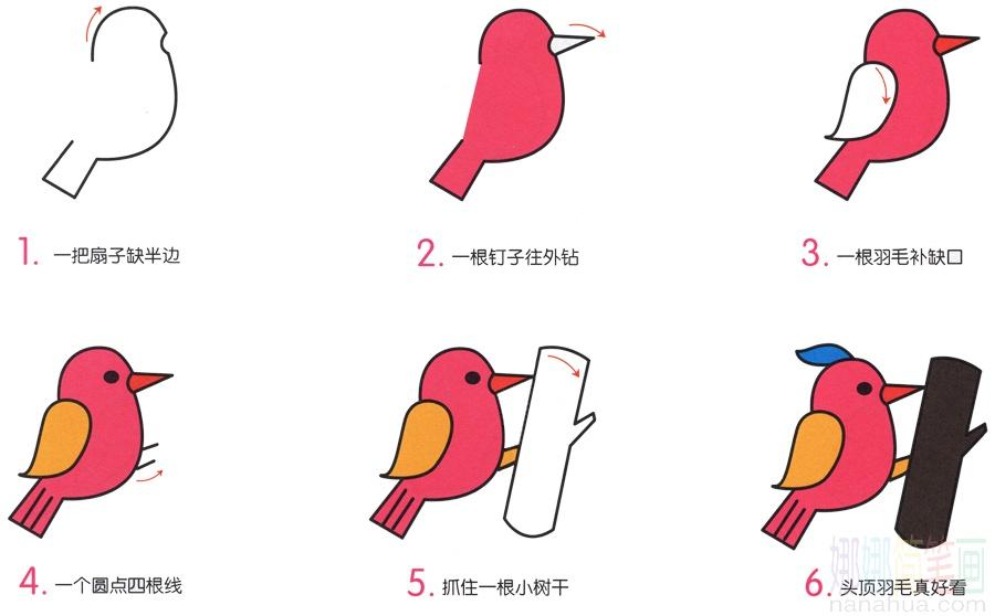 啄木鸟的简笔画画法_图片 2
