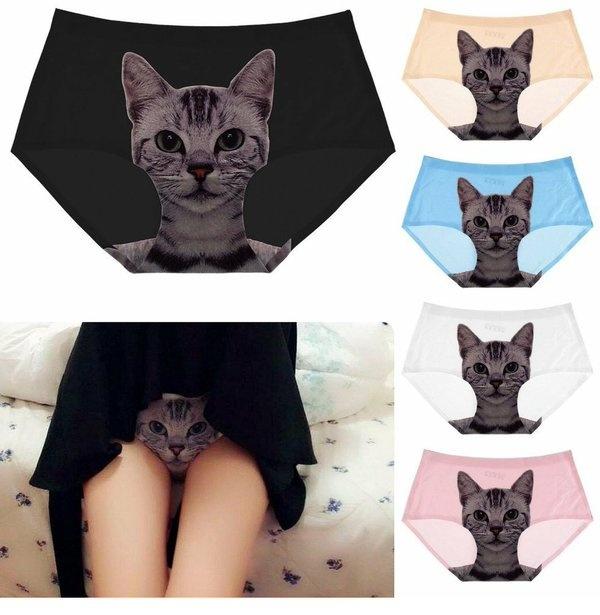 请问这样的内裤在哪里能买到? 趣图
