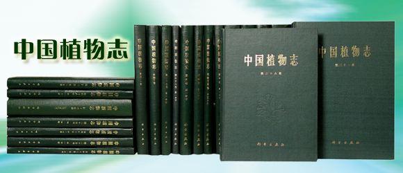 《中国植物志》中关于「辣木」的记载 辣木文献