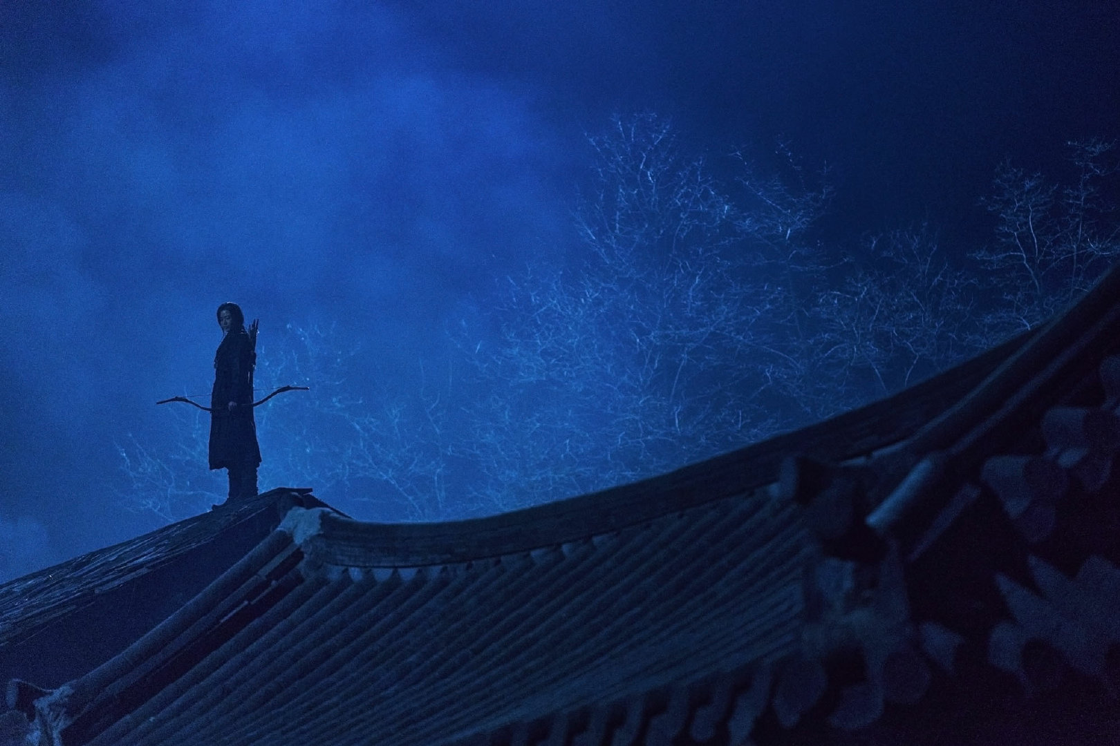 Netflix高分韩剧《王国》全两季+王国前传《北方的阿信》下载-Netflix-『游乐宫』Youlegong.com
