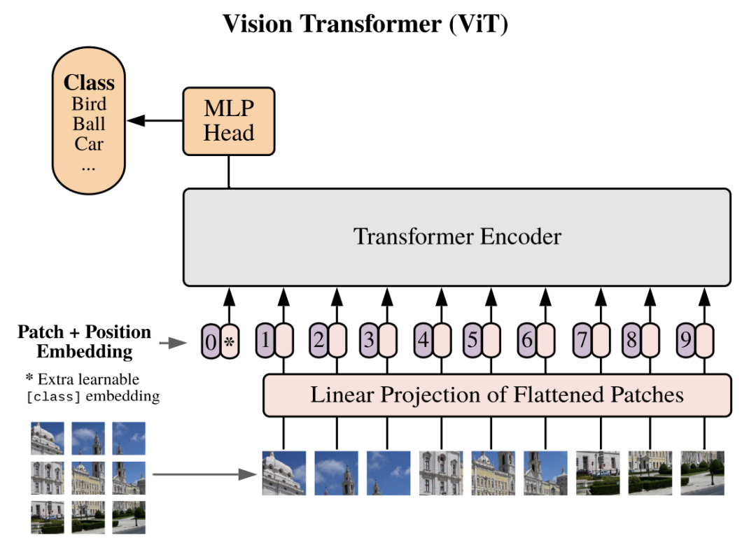 图2 Vision Transformer(ViT)对输入的表征方式