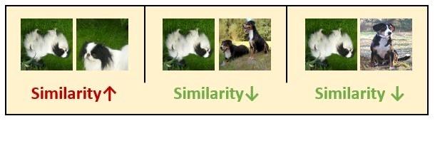 图9:每一行的第1个元素是某张图片自己与自己的匹配度,每一行的后面K 个元素是某张图片与其他 K 个图片的匹配度