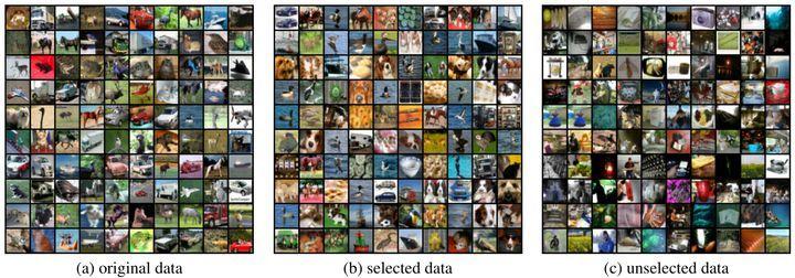图4:从ImageNet 数据集中所选择的数据