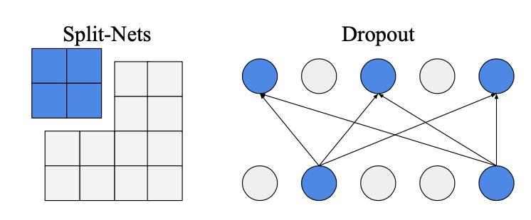 Split-Nets vs Dropout