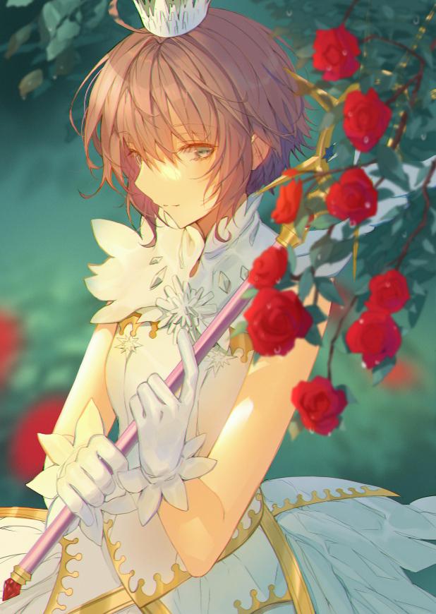 【动漫图集】木之本樱-木之本桜