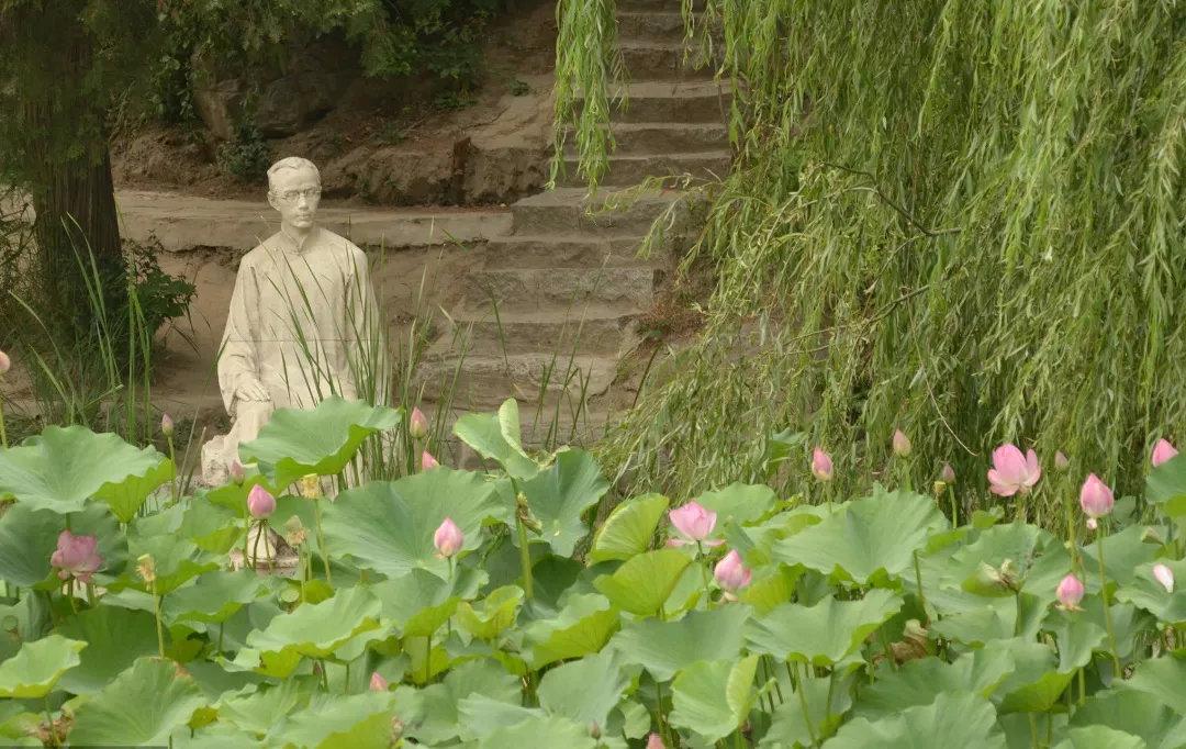 2017年6月18日,北京清华园,朱自清荷塘月色景点。朱自清先生是江苏东海人,1916年成功考入北京大学,1925年应聘到清华任教
