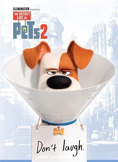 《宠物当家2》:纯粹卖萌。