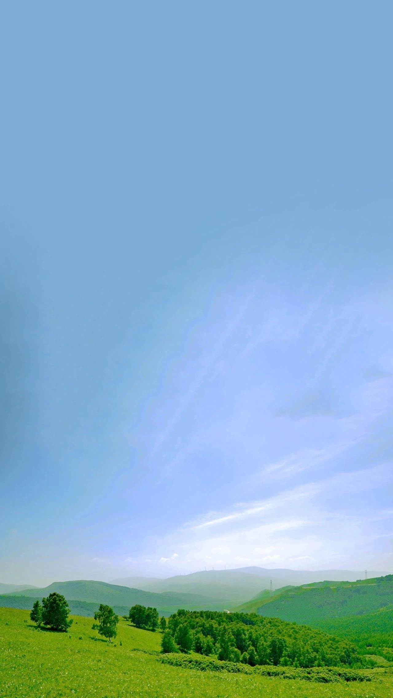 唯美小清新蓝天绿林全面屏手机壁纸