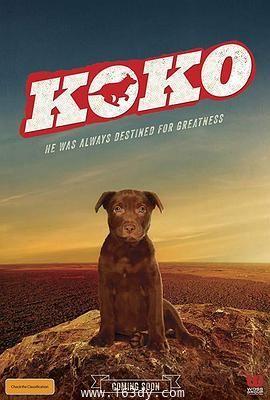 Koko:红犬历险记
