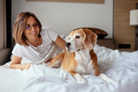 养宠物健康疾病预防,如何健康养宠物