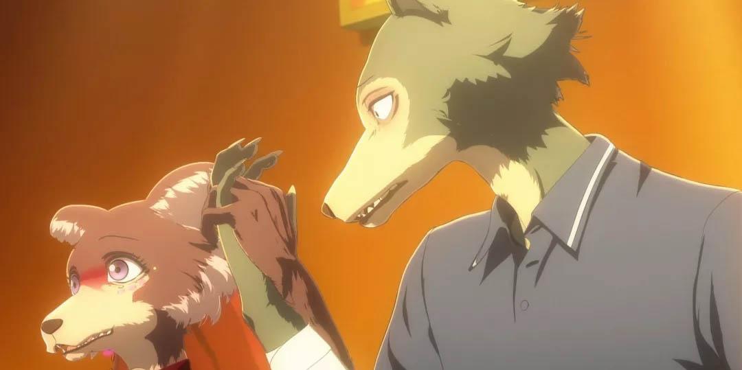 TV动画《动物狂想曲》确定制作第二季 未来或有新角色-四斋社