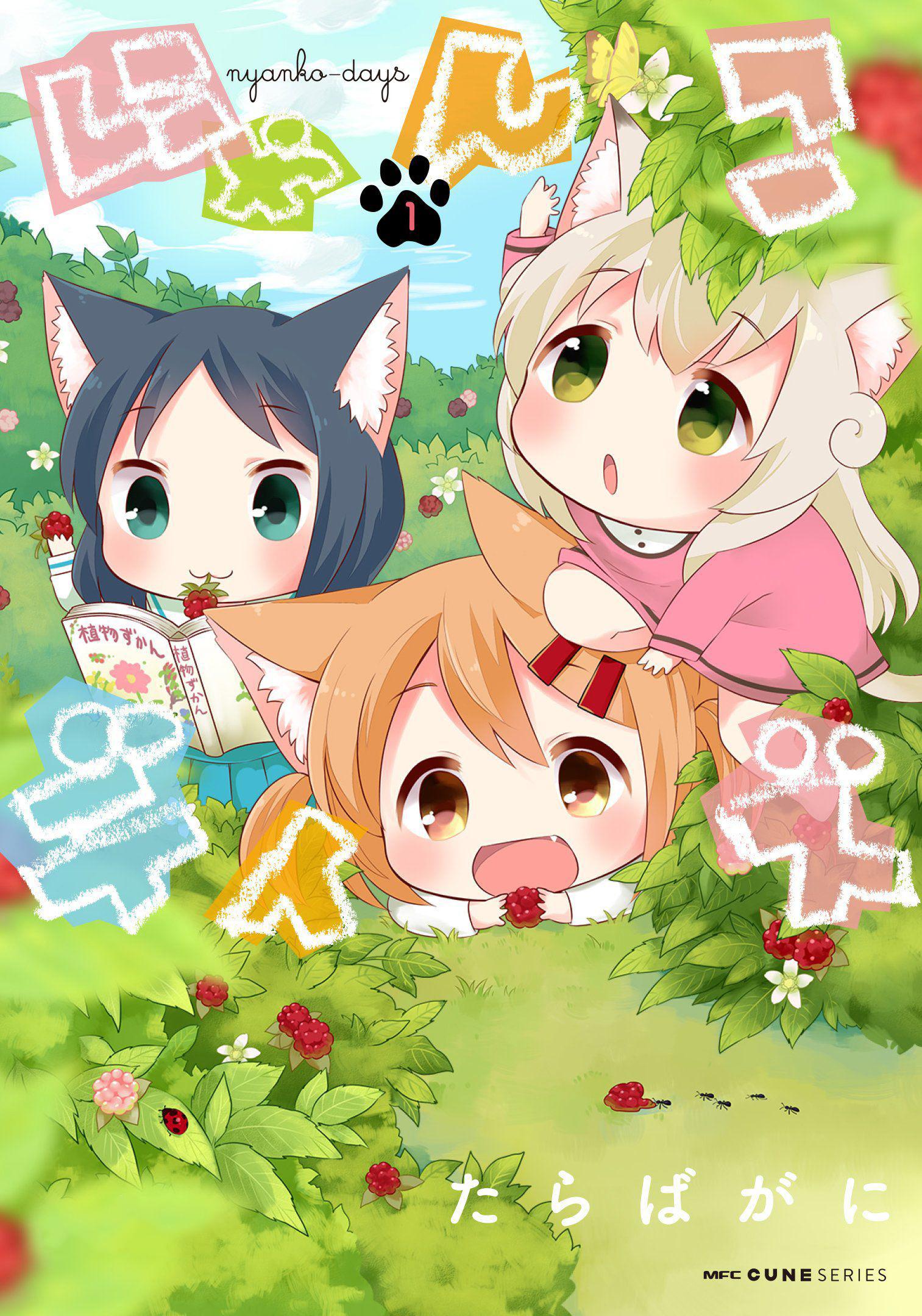《猫咪日常》百度网盘下载