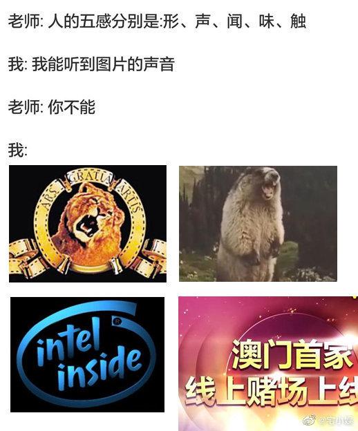 """日刊: """"ASMR""""是什么?熊猫倒闭前的卖肉视频有多好看? liuliushe.net六六社 第25张"""