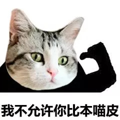 猫脸熊猫人表情包-我不允许你比本猫皮