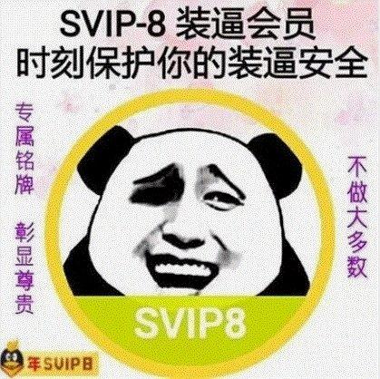 SVIP-8装逼会员时刻保护