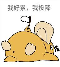 我好累,我投降 - 可达鸭的学术日常