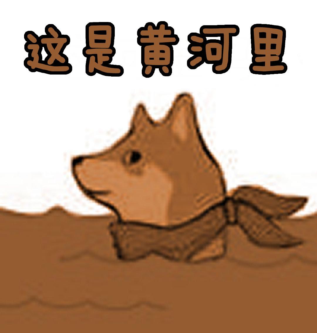 这是黄河里 - 这合理吗 - Mr.Quin 狗头鱼谐音梗表情包