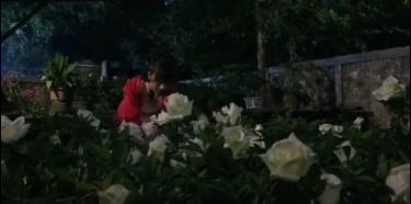 丈夫杀妻埋花园,儿子浇水出奇观