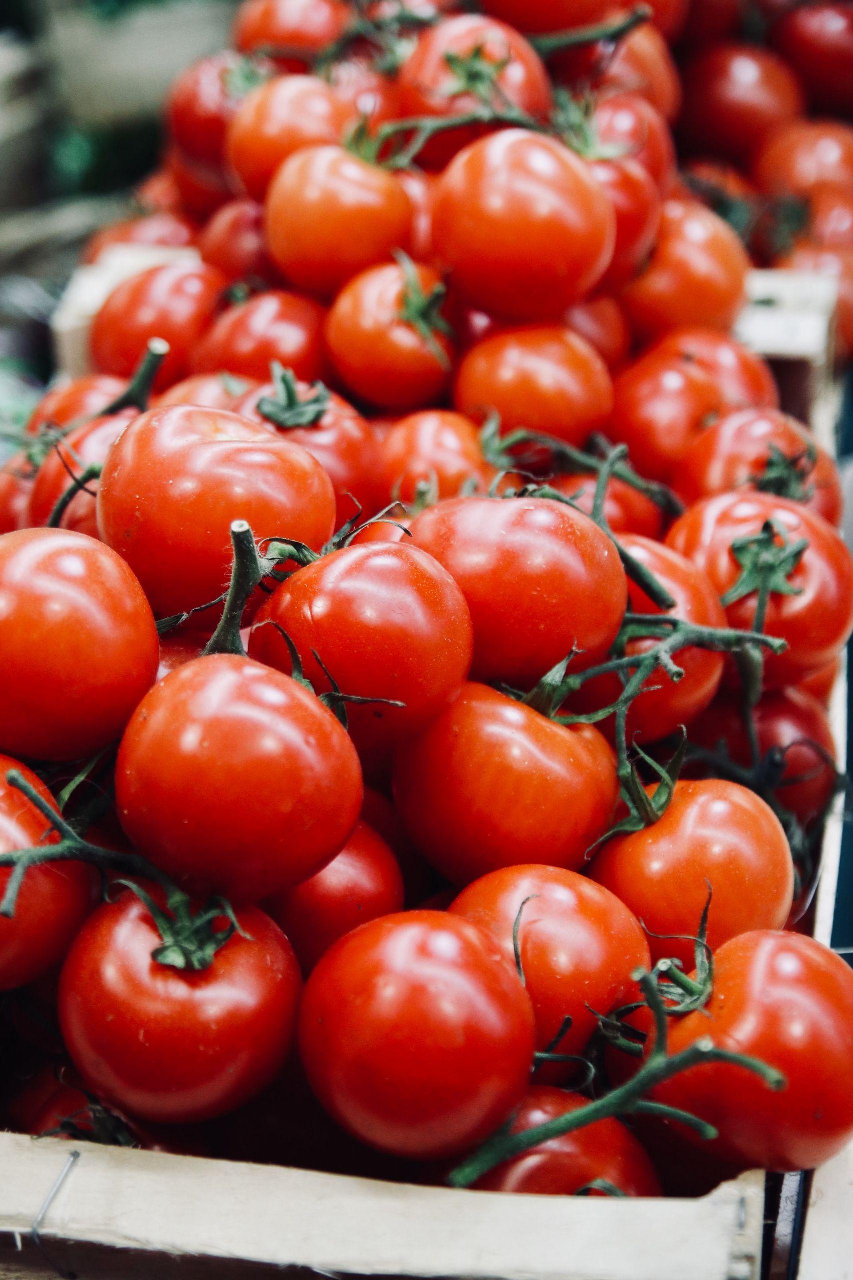 满屏的西红柿唯美摄影图片