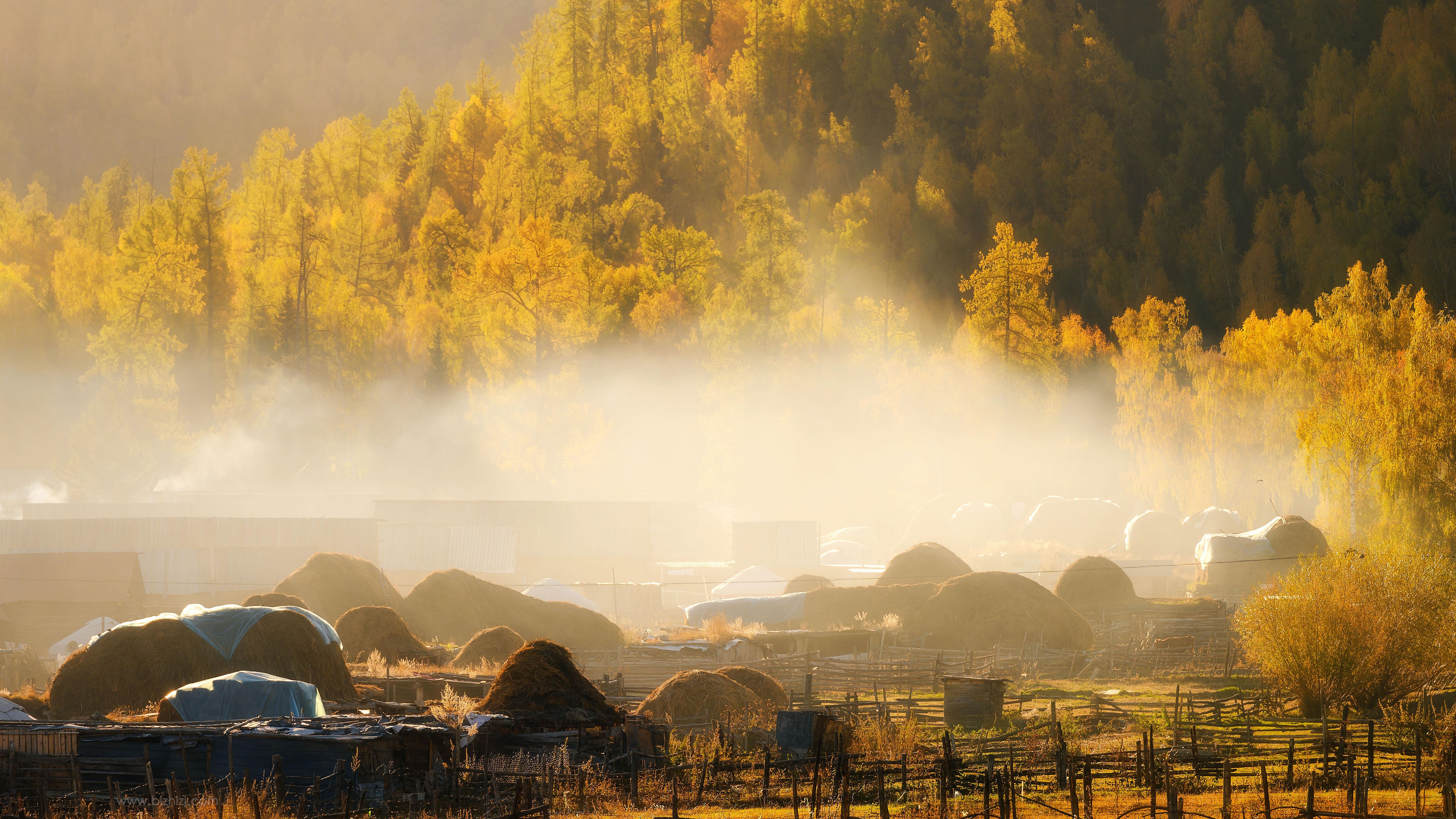 新疆阿勒泰秋天景色壁纸 风景