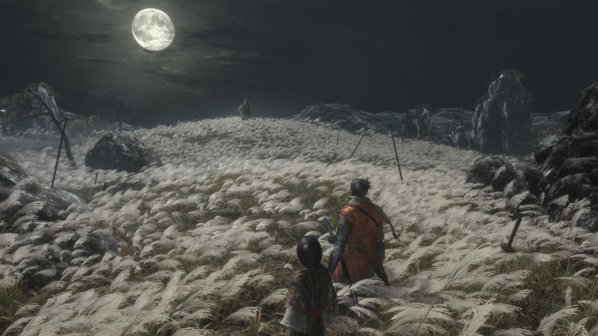 最近很火(很难)的游戏《只狼:影逝二度》