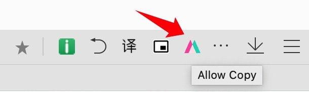5f2446d15e93e - 谷歌浏览器 Simple Allow Copy 插件突破网页右键复制文字限制