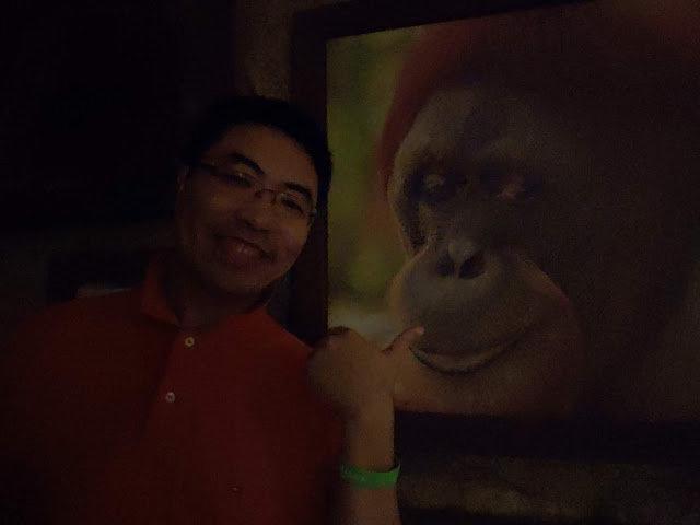 Singapore Zoo——Rainforest Lumina-第13张图片-Celia的博客