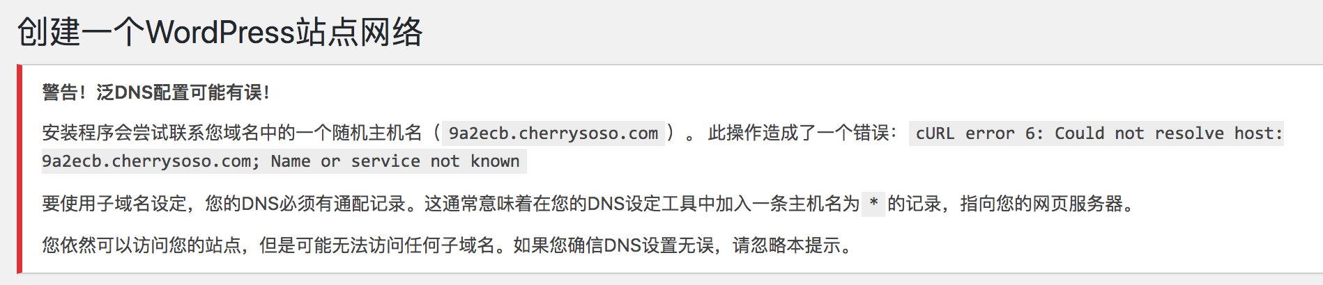 泛DNS配置有误
