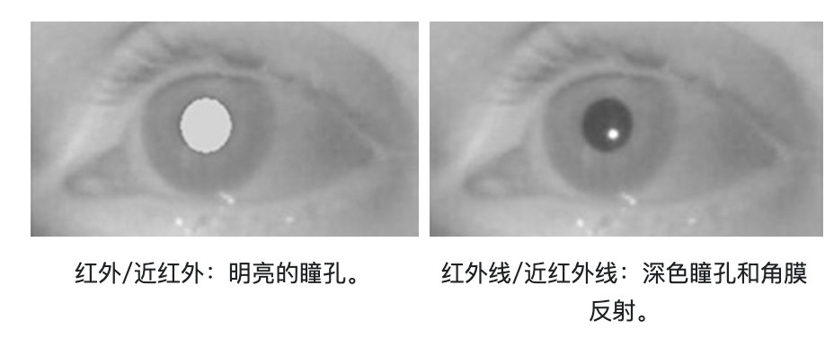 image-20200713094452991