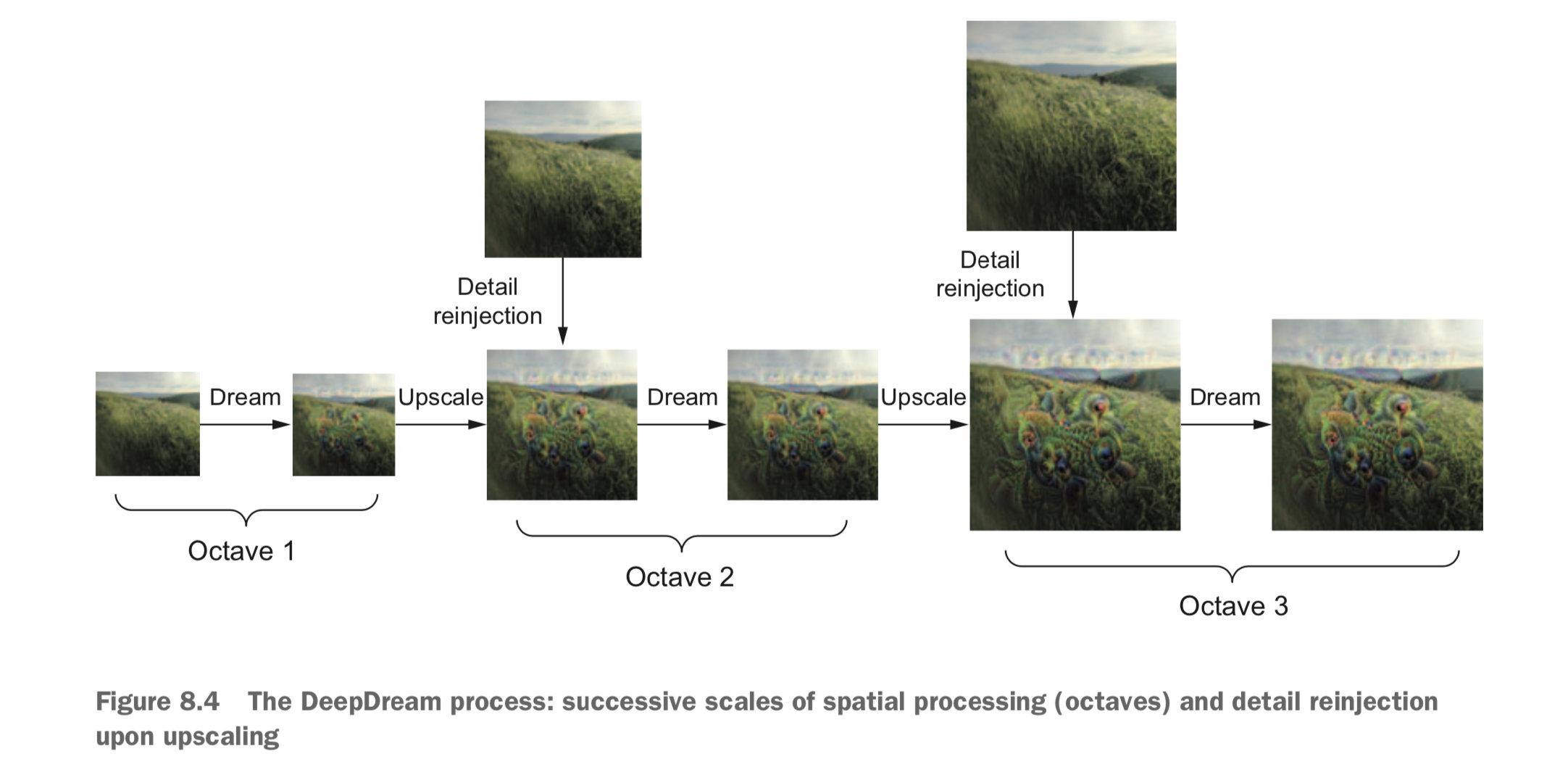 DeepDream 过程:空间处理尺度的连续放大(八度)与放大时重新注入细节