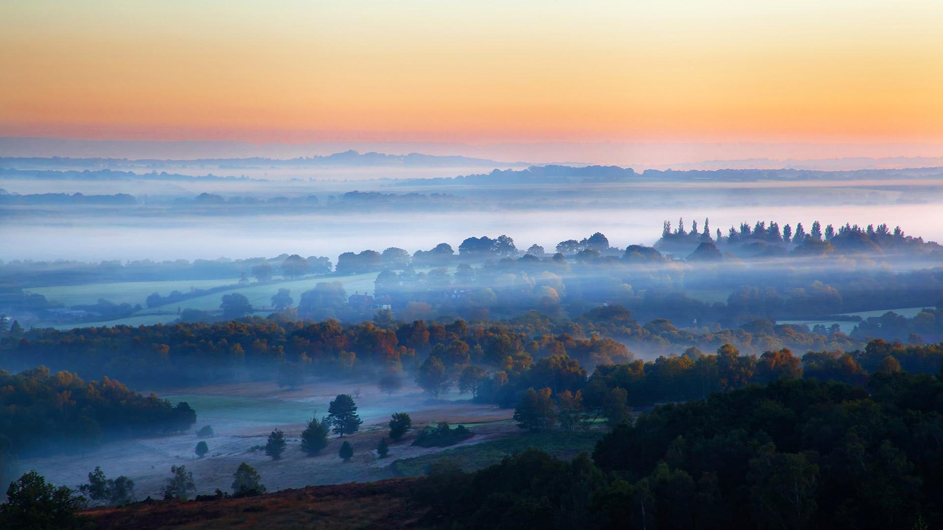 亚士顿森林薄雾日出