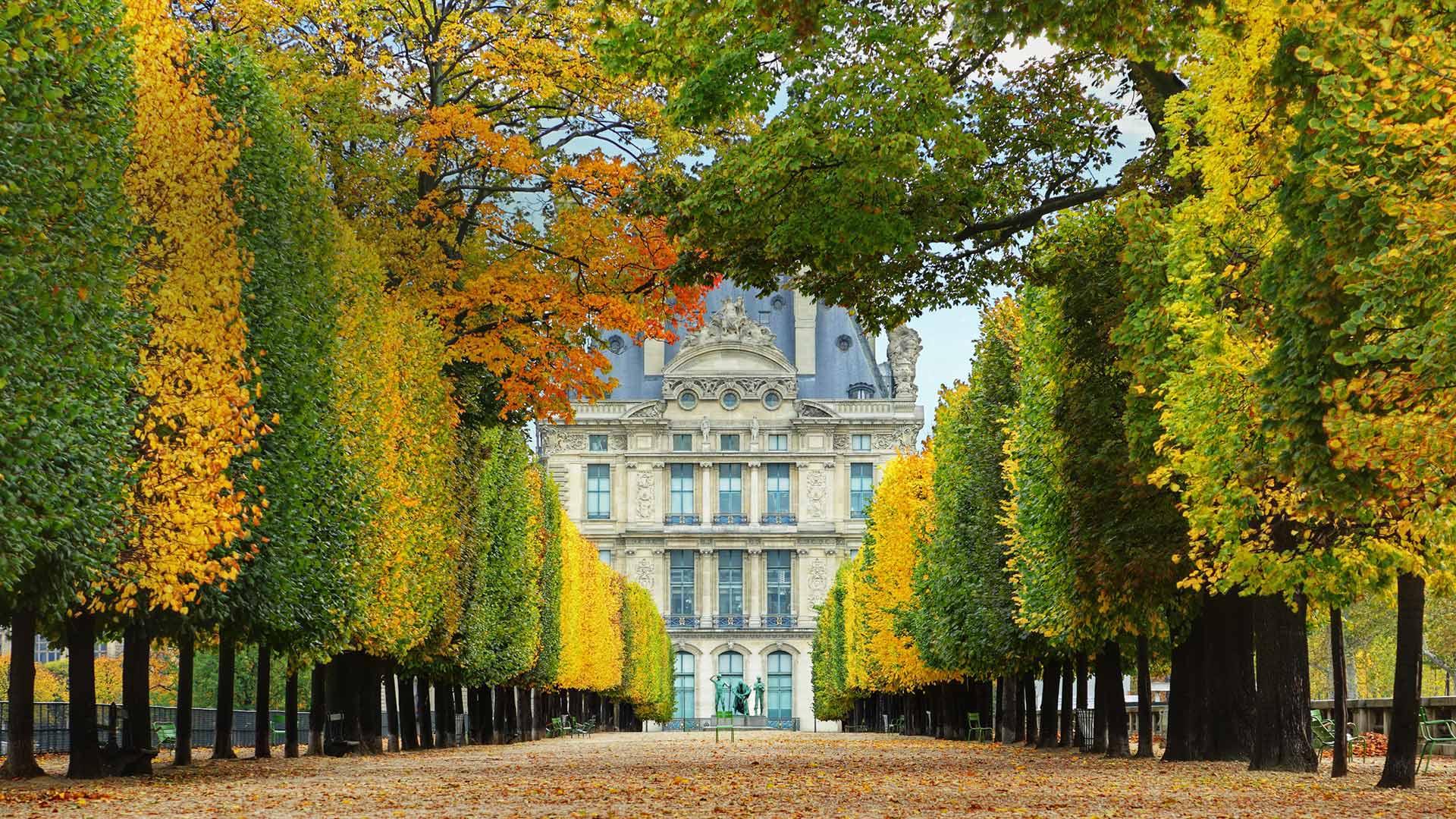 秋日里通往卢浮宫的杜乐丽花园