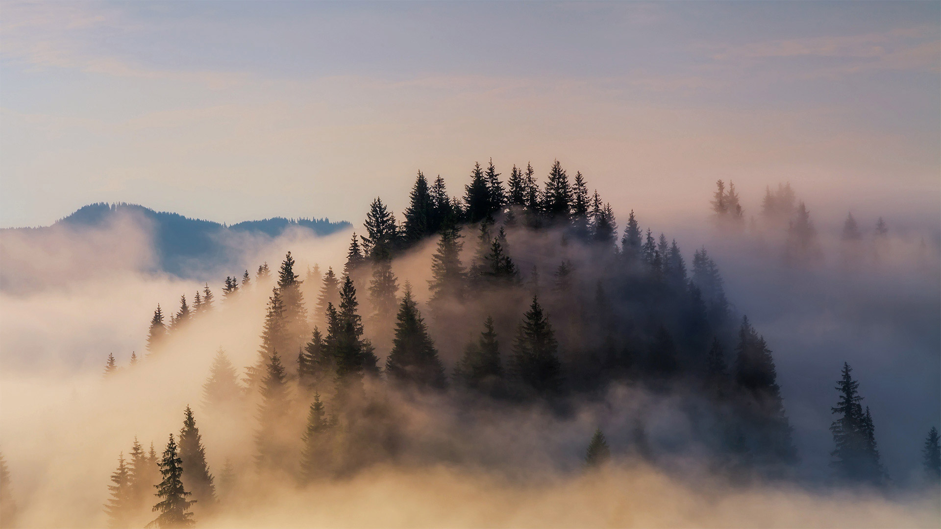 大雾笼罩下的巴伐利亚阿尔卑斯山脉巴伐利亚阿尔卑斯山脉