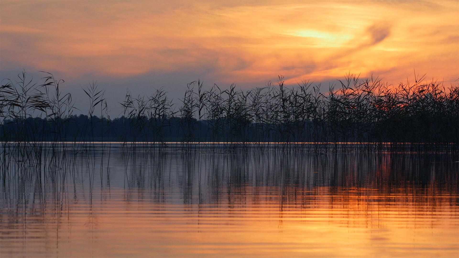 埃热泽尔斯湖面上的波纹埃热泽尔斯湖