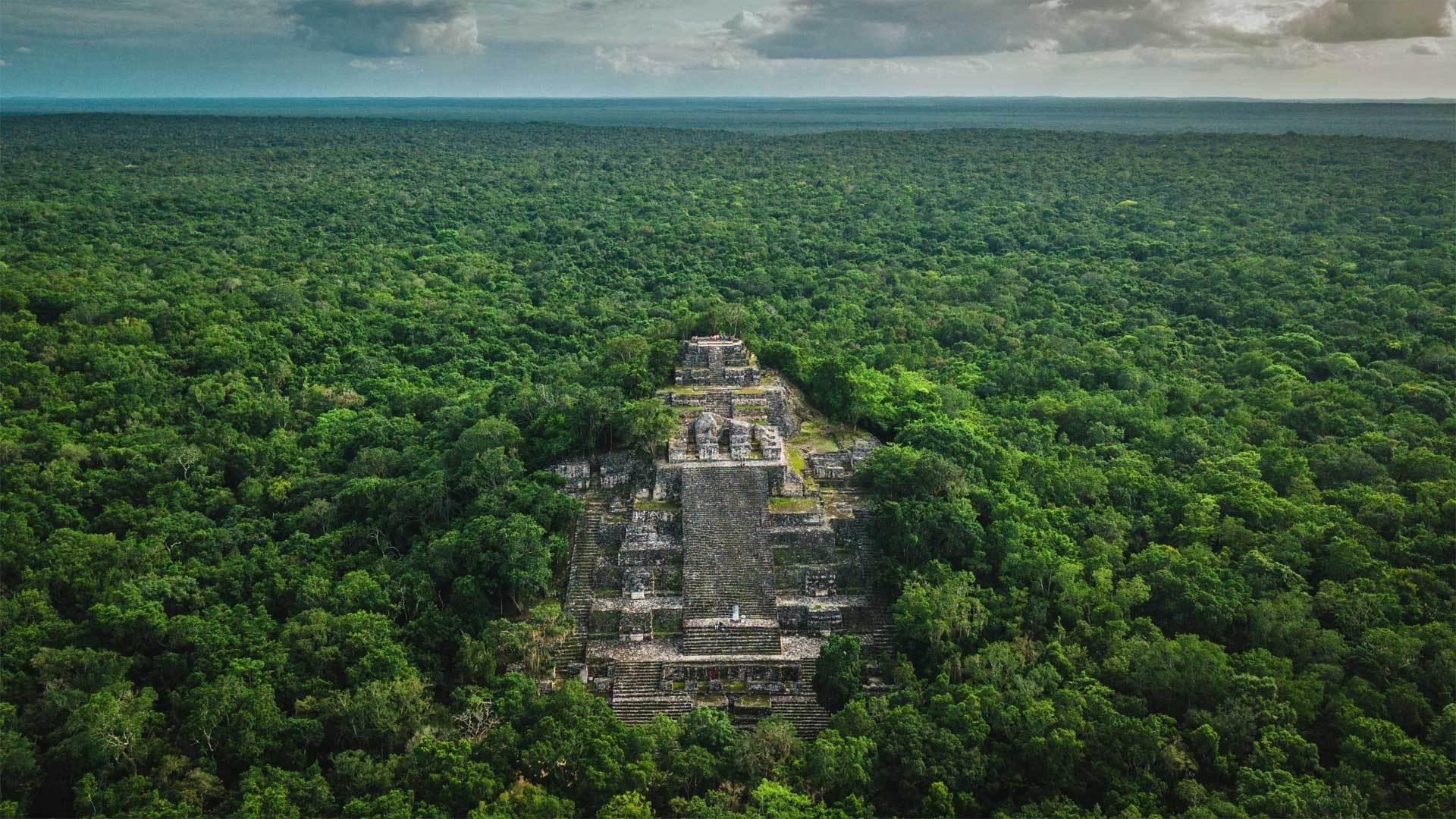 被丛林包围着的玛雅古城卡拉克穆尔遗址卡拉克穆尔遗址