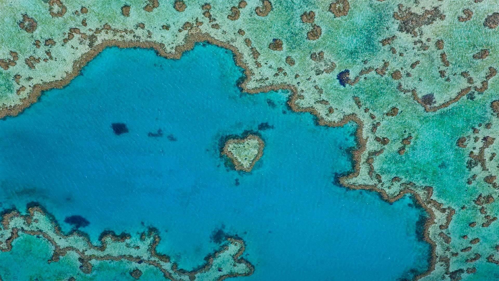 属于大堡礁的一部分的心形礁心形礁