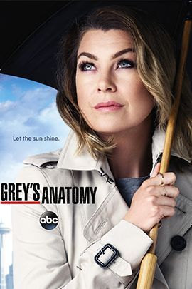 实习医生格蕾 第十二季的海报